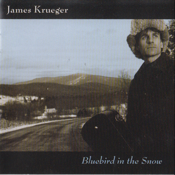 Image for Bluebird in the Snow